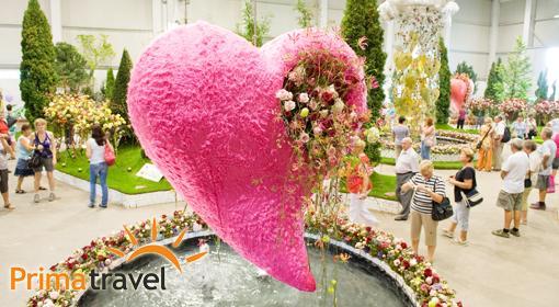 Výstava kvetov a záhrad v T...
